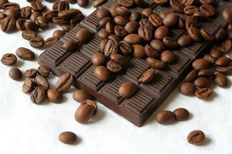 cacao_chocolade_watishetverschil_spiruella_nl